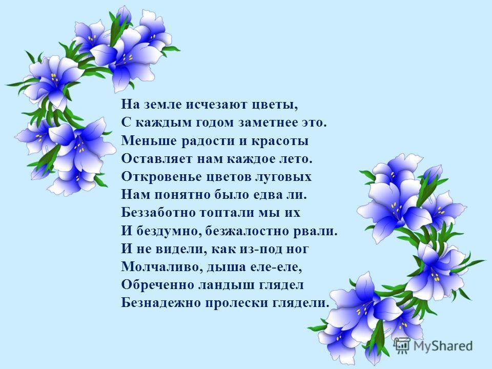 На земле исчезают цветы, С каждым годом заметнее это. Меньше радости и красоты Оставляет нам каждое лето. Откровенье цветов луговых Нам понятно было едва ли. Беззаботно топтали мы их И бездумно, безжалостно рвали. И не видели, как из-под ног Молчалив