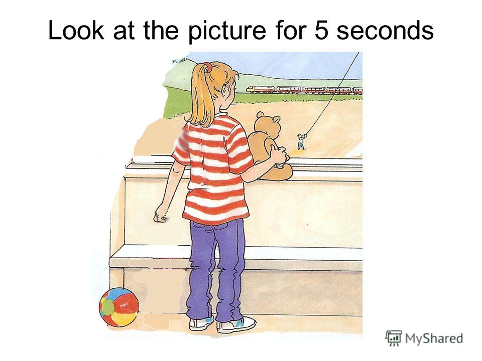 Look at the picture for 5 seconds