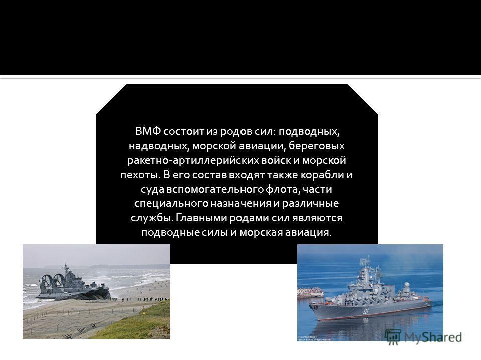 ВМФ состоит из родов сил: подводных, надводных, морской авиации, береговых ракетно-артиллерийских войск и морской пехоты. В его состав входят также корабли и суда вспомогательного флота, части специального назначения и различные службы. Главными рода