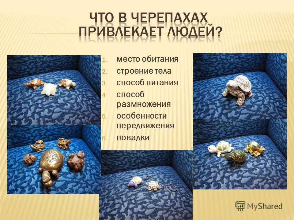 1. место обитания 2. строение тела 3. способ питания 4. способ размножения 5. особенности передвижения 6. повадки