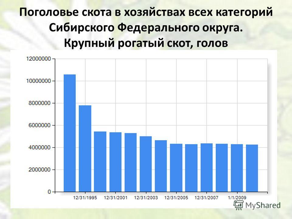Поголовье скота в хозяйствах всех категорий Сибирского Федерального округа. Крупный рогатый скот, голов
