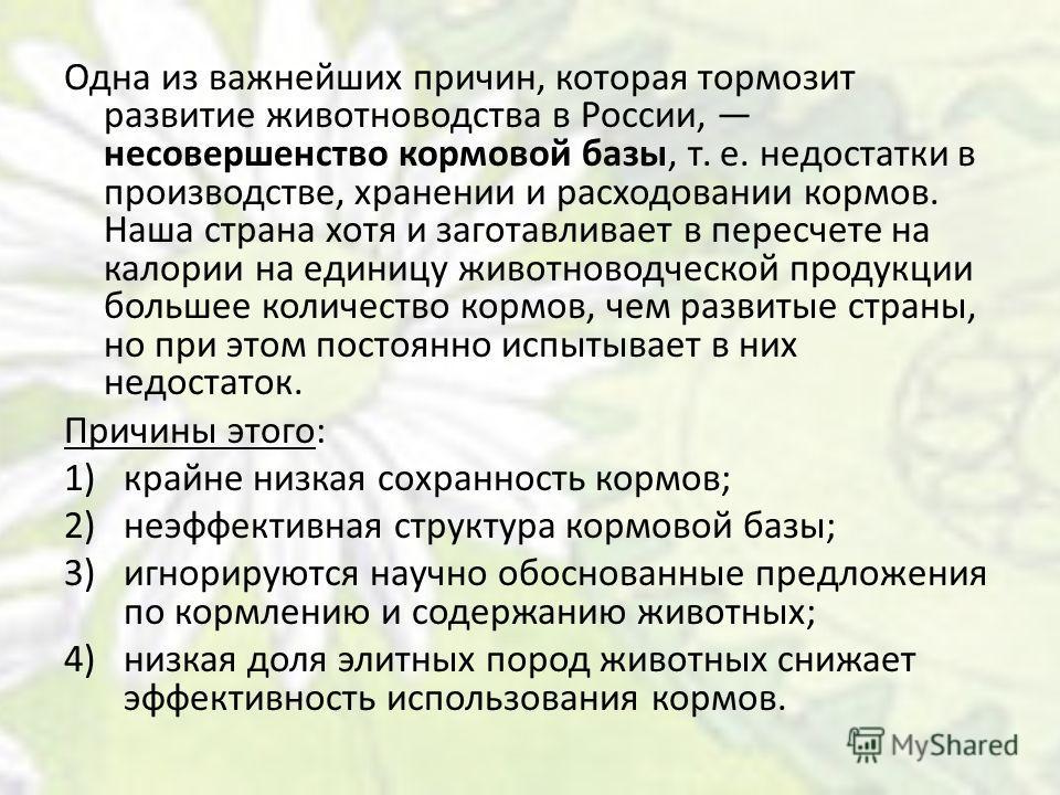 Одна из важнейших причин, которая тормозит развитие животноводства в России, несовершенство кормовой базы, т. е. недостатки в производстве, хранении и расходовании кормов. Наша страна хотя и заготавливает в пересчете на калории на единицу животноводч