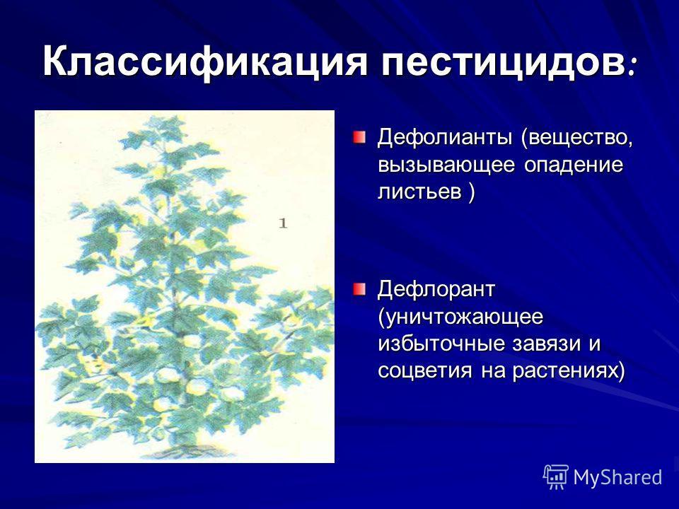 Классификация пестицидов : Дефолианты (вещество, вызывающее опадение листьев) Дефолианты (вещество, вызывающее опадение листьев ) Дефлорант (уничтожающее избыточные завязи и соцветия на растениях)