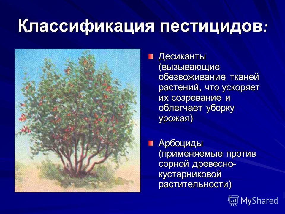 Классификация пестицидов : Десиканты (вызывающие обезвоживание тканей растений, что ускоряет их созревание и облегчает уборку урожая) Арбоциды (применяемые против сорной древесно- кустарниковой растительности)