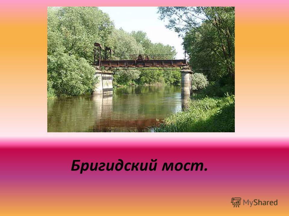 Бригидский мост.