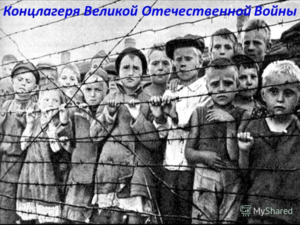 Концлагеря Великой Отечественной Войны