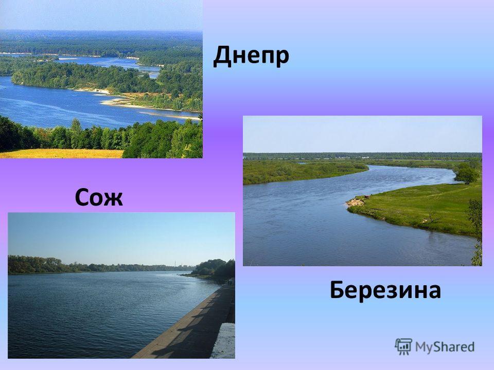 Днепр Сож Березина