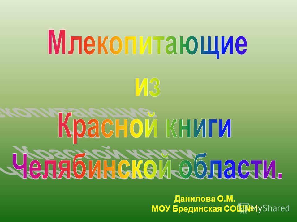 Данилова О.М. МОУ Брединская СОШ1