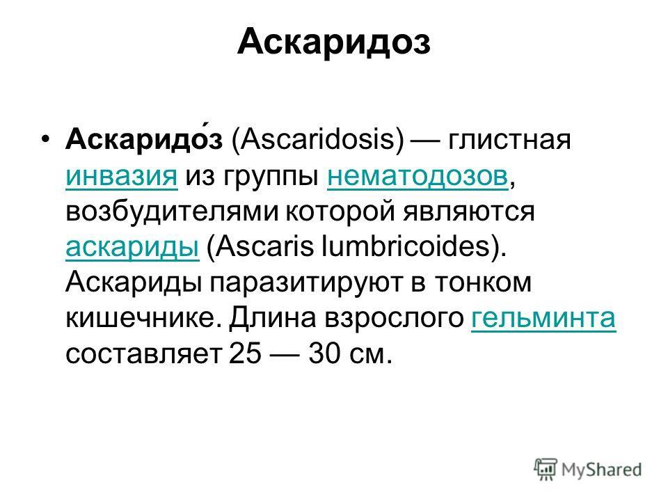 Аскаридоз Аскаридо́з (Ascaridosis) глистная инвазия из группы нематодозов, возбудителями которой являются аскариды (Ascaris lumbricoides). Аскариды паразитируют в тонком кишечнике. Длина взрослого гельминта составляет 25 30 см. инвазиянематодозов аск