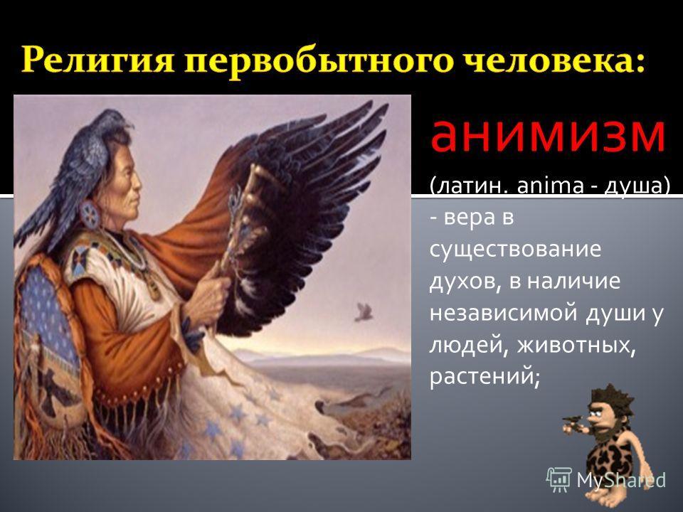 анимизм (латин. anima - душа) - вера в существование духов, в наличие независимой души у людей, животных, растений;