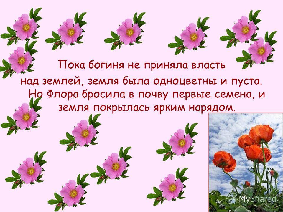 Пока богиня не приняла власть над землей, земля была одноцветны и пуста. Но Флора бросила в почву первые семена, и земля покрылась ярким нарядом.