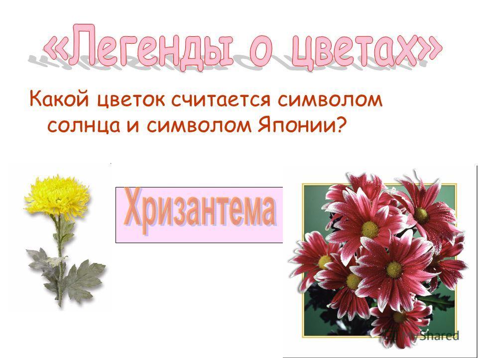Какой цветок считается символом солнца и символом Японии?