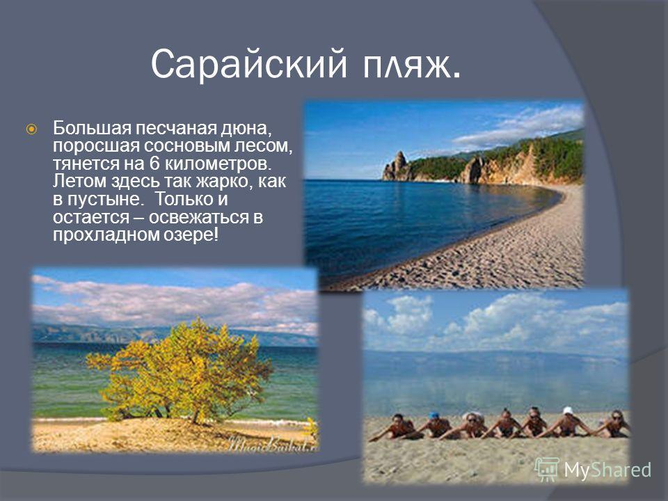 Сарайский пляж. Большая песчаная дюна, поросшая сосновым лесом, тянется на 6 километров. Летом здесь так жарко, как в пустыне. Только и остается – освежаться в прохладном озере!