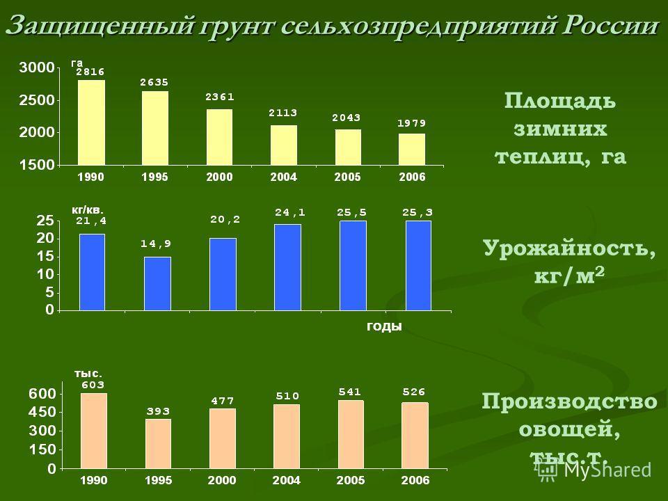 Защищенный грунт сельхозпредприятий России годы Урожайность, кг/м 2 Площадь зимних теплиц, га Производство овощей, тыс.т.