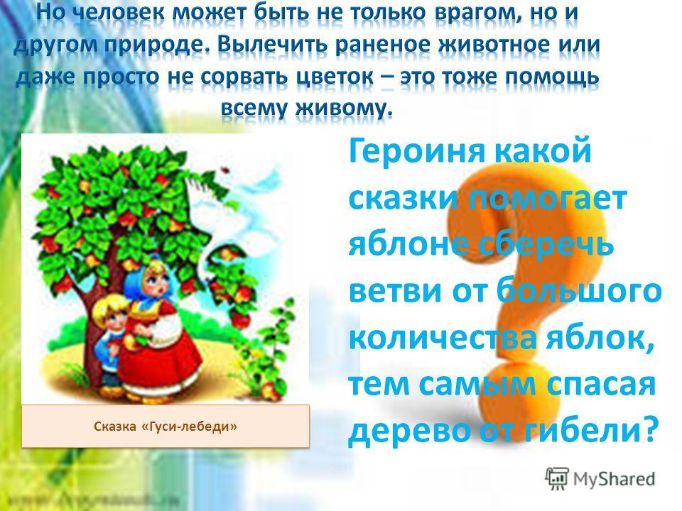 Сказка «Гуси-лебеди» Героиня какой сказки помогает яблоне сберечь ветви от большого количества яблок, тем самым спасая дерево от гибели?