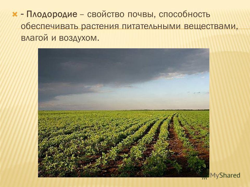 - Плодородие – свойство почвы, способность обеспечивать растения питательными веществами, влагой и воздухом.