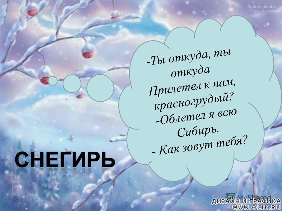 -Ты откуда, ты откуда Прилетел к нам, красногрудый? -Облетел я всю Сибирь. - Как зовут тебя?