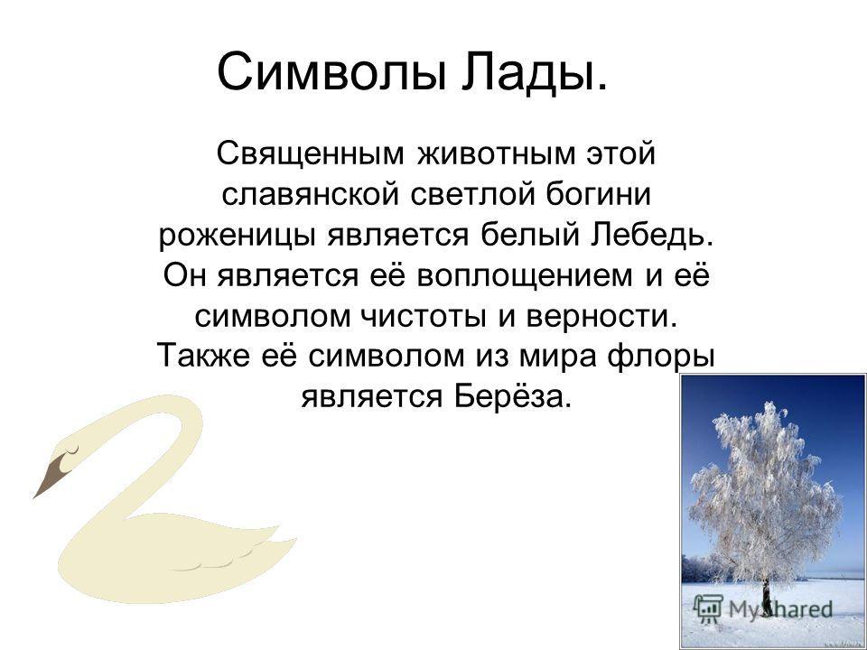 Символы Лады. Священным животным этой славянской светлой богини роженицы является белый Лебедь. Он является её воплощением и её символом чистоты и верности. Также её символом из мира флоры является Берёза.