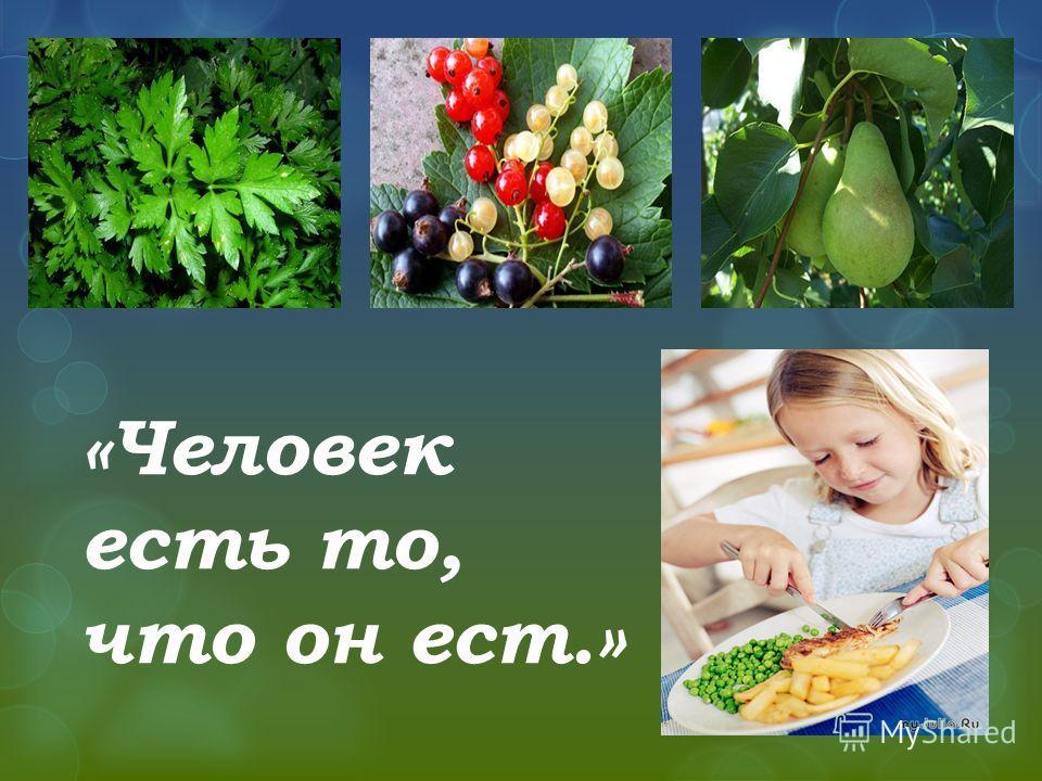 «Человек есть то, что он ест.»