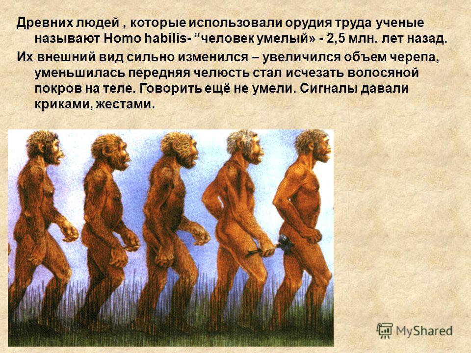 Древних людей, которые использовали орудия труда ученые называют Homo habilis- человек умелый» - 2,5 млн. лет назад. Их внешний вид сильно изменился – увеличился объем черепа, уменьшилась передняя челюсть стал исчезать волосяной покров на теле. Говор