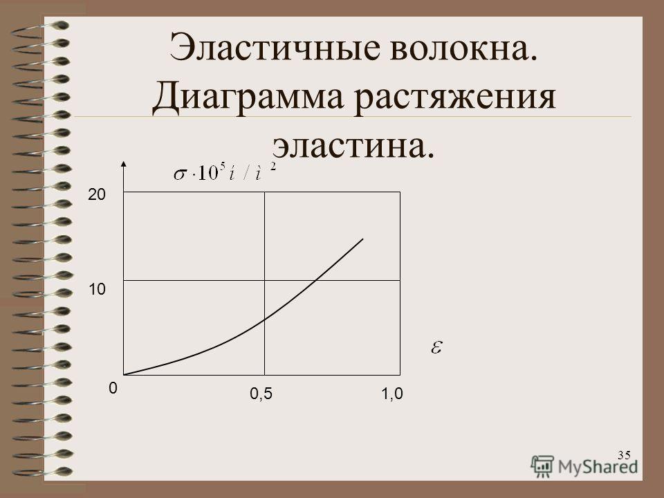 35 Эластичные волокна. Диаграмма растяжения эластина. 0 20 10 0,51,0