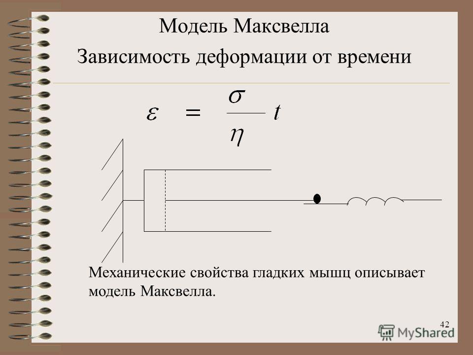 42 Модель Максвелла Зависимость деформации от времени Механические свойства гладких мышц описывает модель Максвелла.