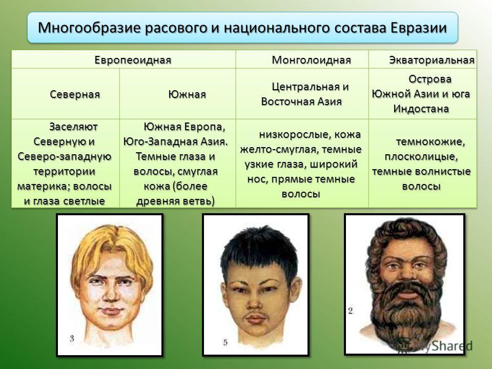 Многообразие расового и национального состава Евразии
