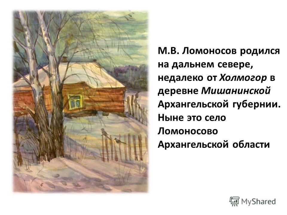 М.В. Ломоносов родился на дальнем севере, недалеко от Холмогор в деревне Мишанинской Архангельской губернии. Ныне это село Ломоносово Архангельской области