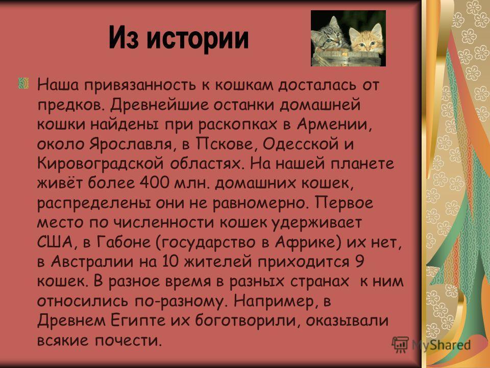 Наша привязанность к кошкам досталась от предков. Древнейшие останки домашней кошки найдены при раскопках в Армении, около Ярославля, в Пскове, Одесской и Кировоградской областях. На нашей планете живёт более 400 млн. домашних кошек, распределены они