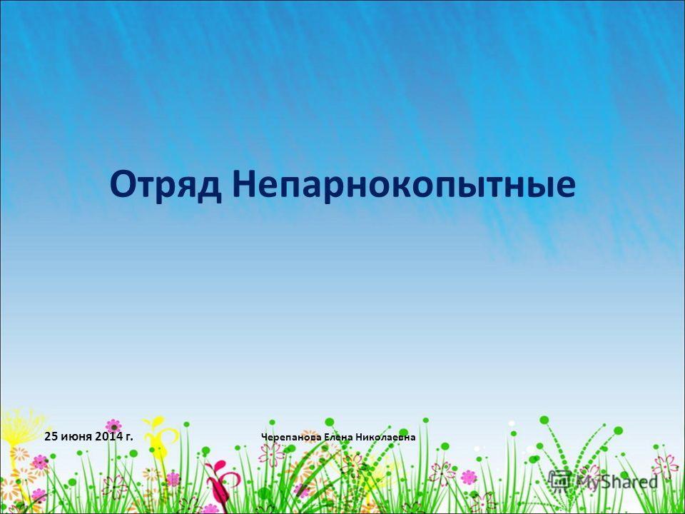 25 июня 2014 г. Черепанова Елена Николаевна Отряд Непарнокопытные
