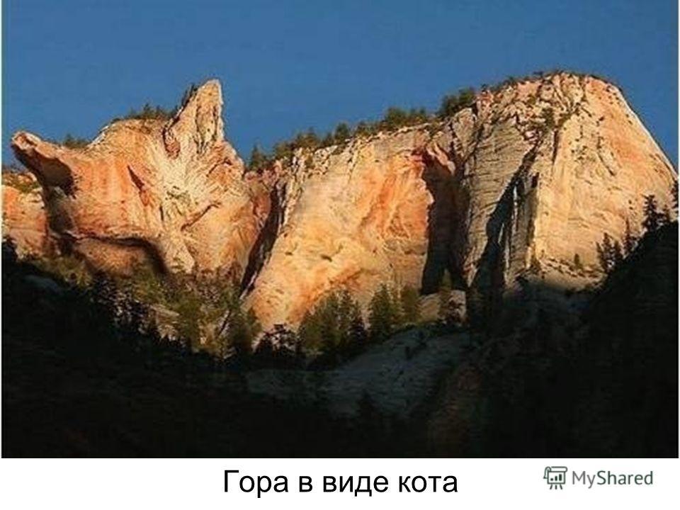 Гора в виде кота