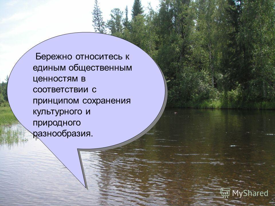 Бережно относитесь к единым общественным ценностям в соответствии с принципом сохранения культурного и природного разнообразия.