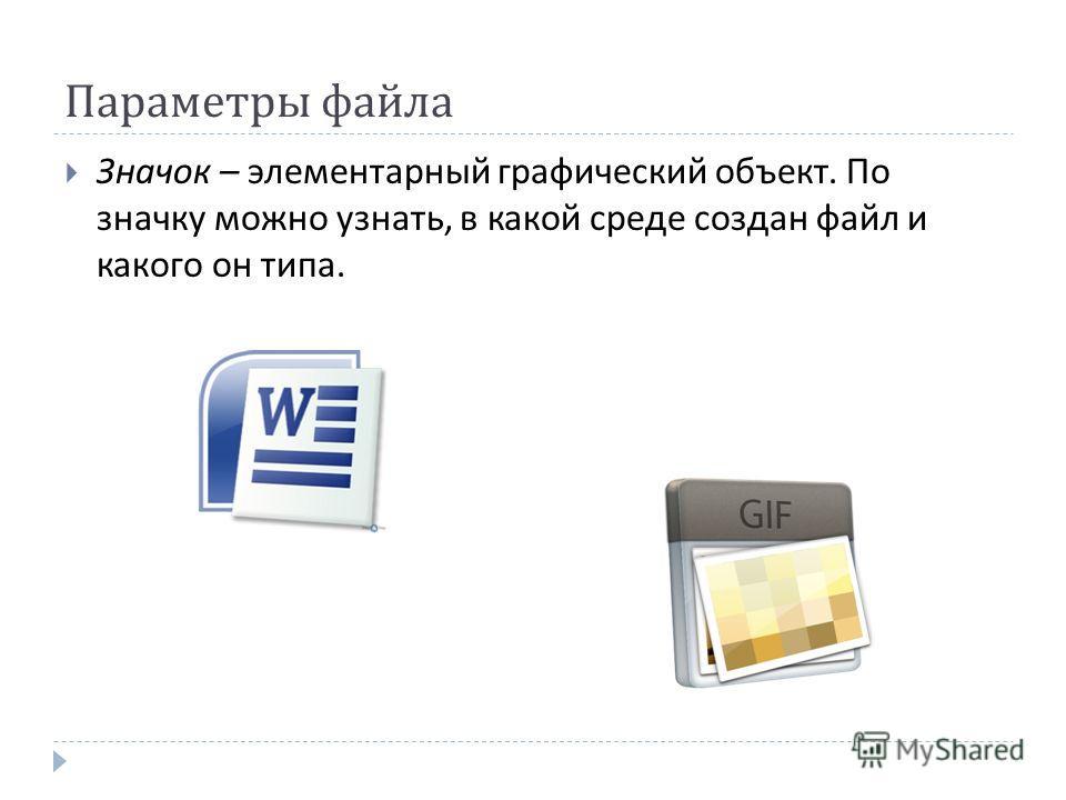 Параметры файла Значок – элементарный графический объект. По значку можно узнать, в какой среде создан файл и какого он типа.