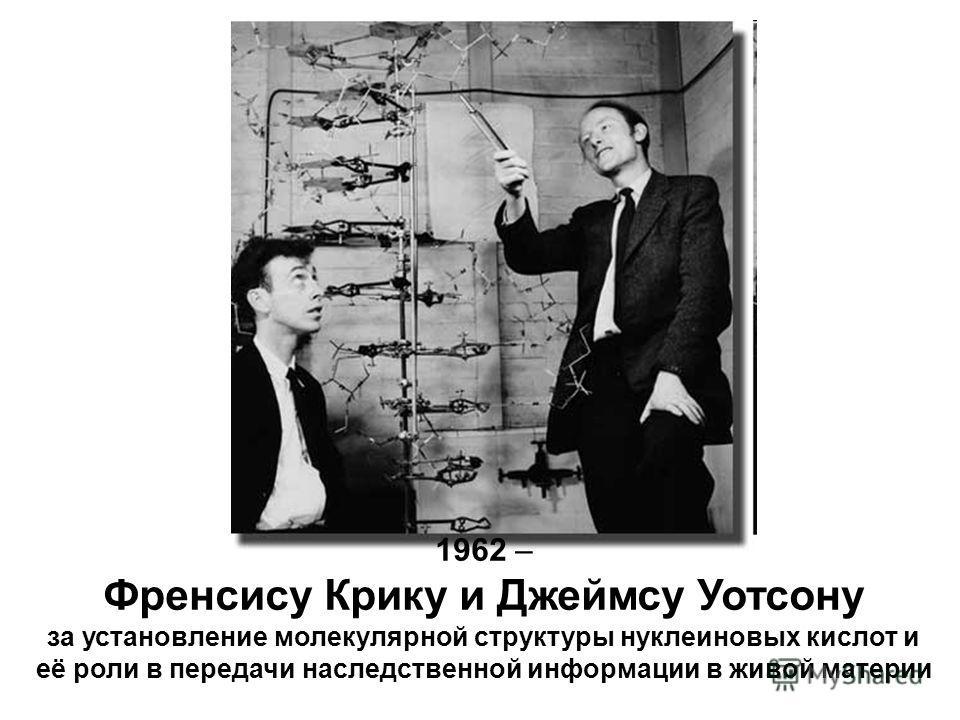 1962 – Френсису Крику и Джеймсу Уотсону за установление молекулярной структуры нуклеиновых кислот и её роли в передачи наследственной информации в живой материи