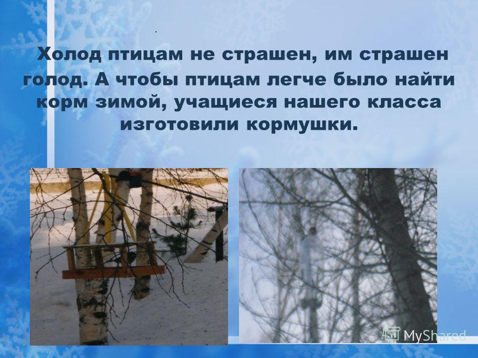 Холод птицам не страшен, им страшен голод. А чтобы птицам легче было найти корм зимой, учащиеся нашего класса изготовили кормушки..