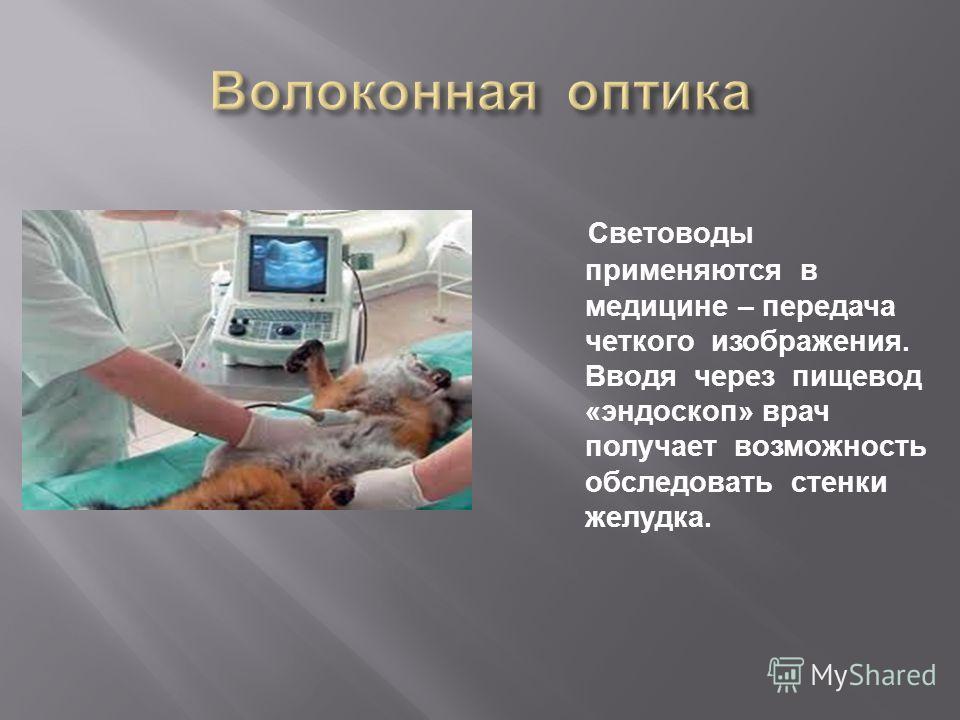 Световоды применяются в медицине – передача четкого изображения. Вводя через пищевод « эндоскоп » врач получает возможность обследовать стенки желудка.