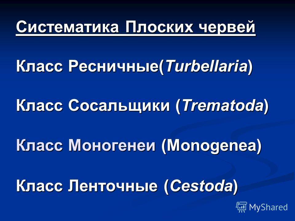 Систематика Плоских червей Класс Ресничные(Turbellaria) Класс Сосальщики (Trematoda) Класс Моногенеи (Monogenea) Класс Ленточные (Cestoda)