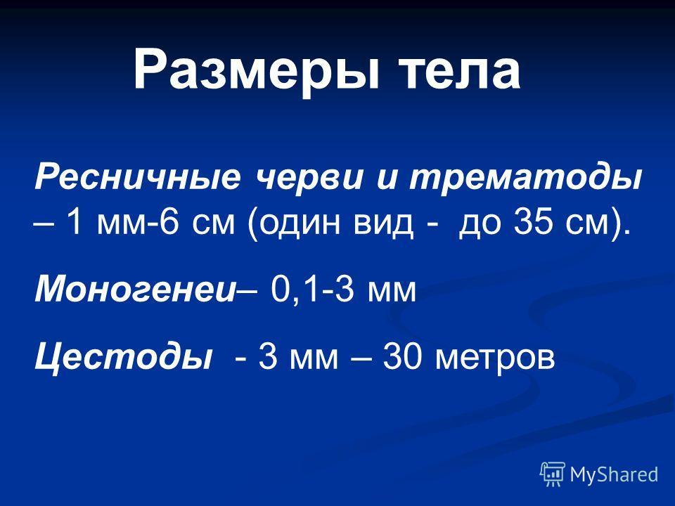 Размеры тела Ресничные черви и трематоды – 1 мм-6 см (один вид - до 35 см). Моногенеи– 0,1-3 мм Цестоды - 3 мм – 30 метров