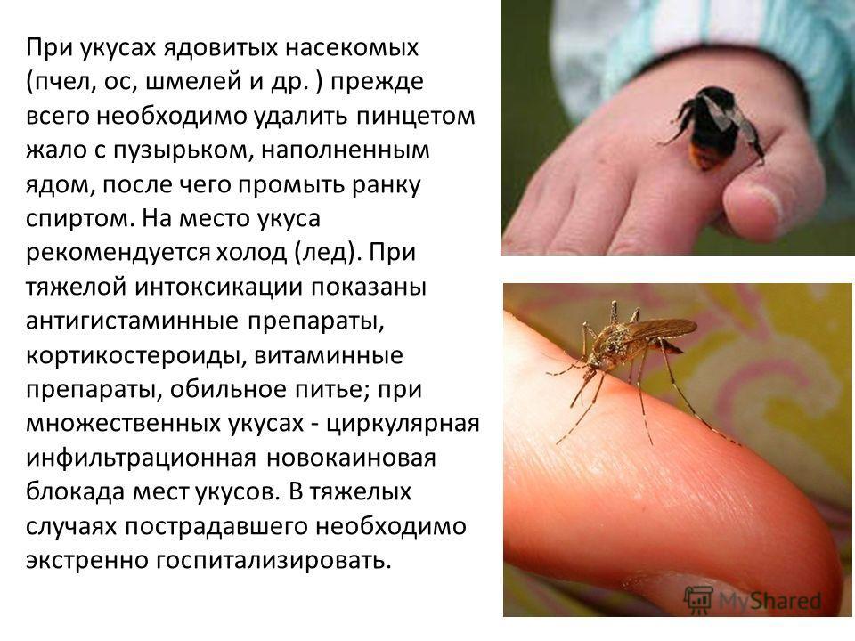 При укусах ядовитых насекомых (пчел, ос, шмелей и др. ) прежде всего необходимо удалить пинцетом жало с пузырьком, наполненным ядом, после чего промыть ранку спиртом. На место укуса рекомендуется холод (лед). При тяжелой интоксикации показаны антигис