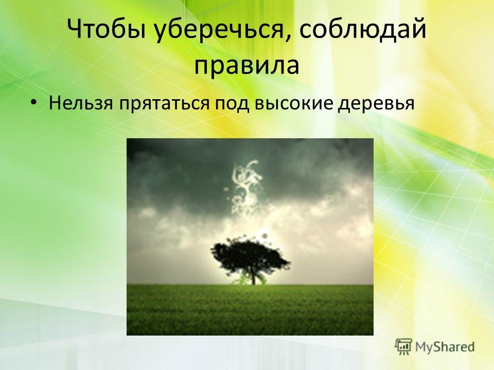 Чтобы уберечься, соблюдай правила Нельзя прятаться под высокие деревья