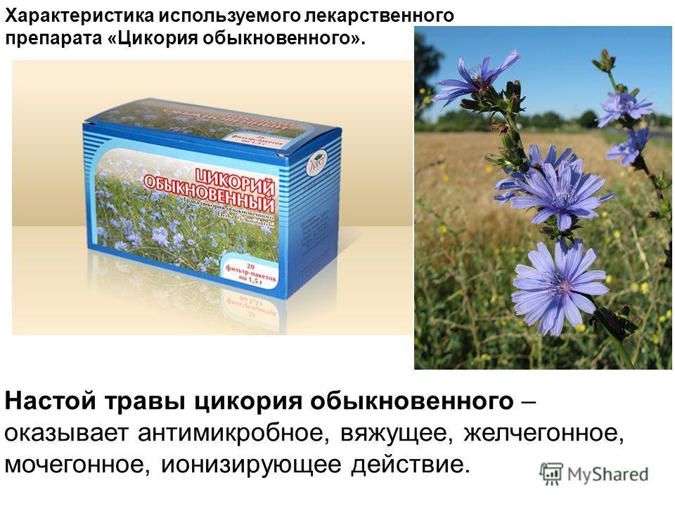 Характеристика используемого лекарственного препарата «Цикория обыкновенного». Настой травы цикория обыкновенного – оказывает антимикробное, вяжущее, желчегонное, мочегонное, ионизирующее действие.