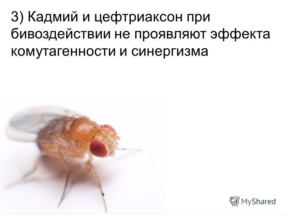 Домащенко А.Н. 3) Кадмий и цефтриаксон при бивоздействии не проявляют эффекта комутагенности и синергизма