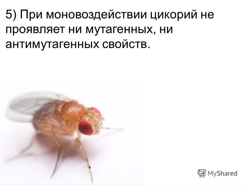 Домащенко А.Н. 5) При моновоздействии цикорий не проявляет ни мутагенных, ни антимутагенных свойств.