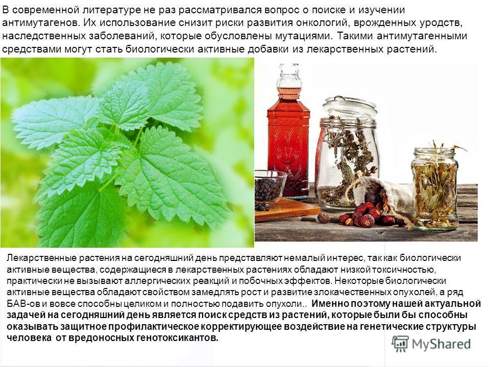 Домащенко А.Н. Лекарственные растения на сегодняшний день представляют немалый интерес, так как биологически активные вещества, содержащиеся в лекарственных растениях обладают низкой токсичностью, практически не вызывают аллергических реакций и побоч