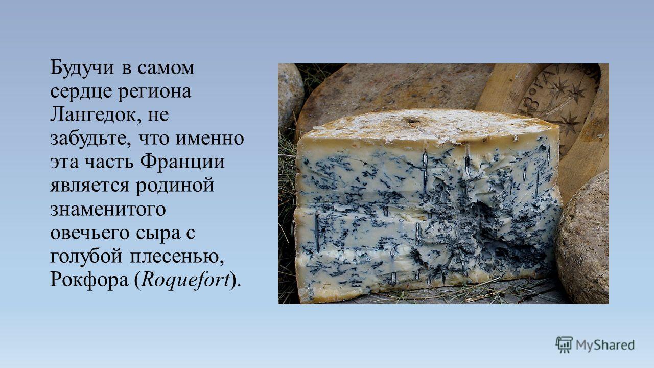 Будучи в самом сердце региона Лангедок, не забудьте, что именно эта часть Франции является родиной знаменитого овечьего сыра с голубой плесенью, Рокфора (Roquefort).