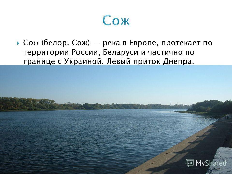 Сож (белор. Сож) река в Европе, протекает по территории России, Беларуси и частично по границе с Украиной. Левый приток Днепра.