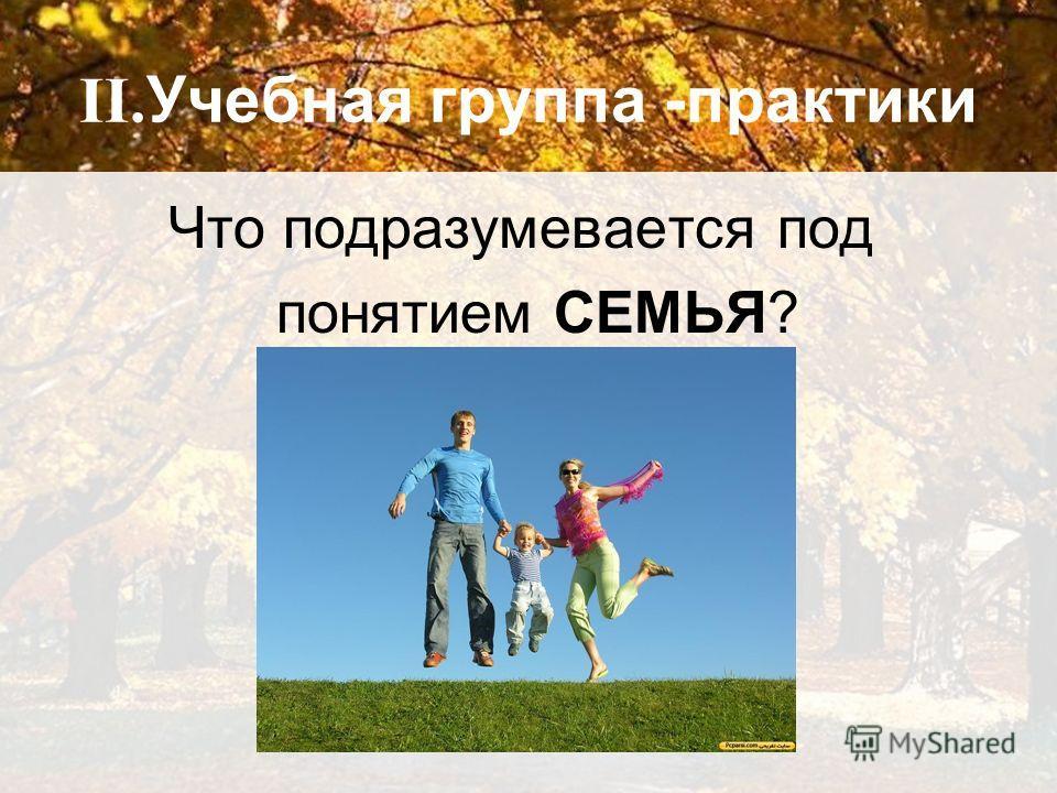 II. Учебная группа -практики Что подразумевается под понятием СЕМЬЯ?
