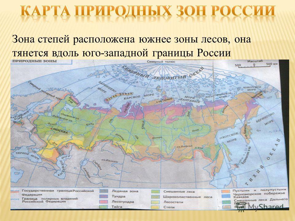Зона степей расположена южнее зоны лесов, она тянется вдоль юго-западной границы России