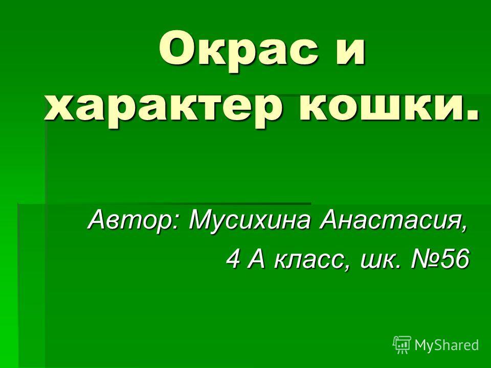 Окрас и характер кошки. Автор: Мусихина Анастасия, 4 А класс, шк. 56