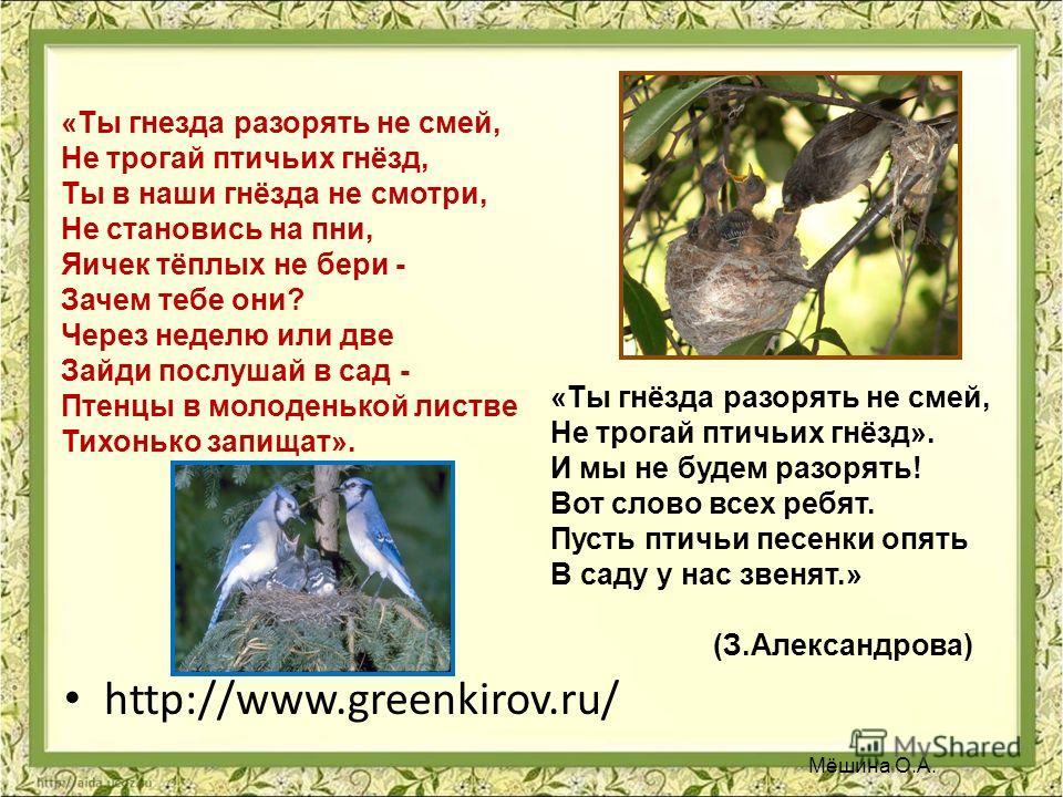 http://www.greenkirov.ru/ «Ты гнезда разорять не смей, Не трогай птичьих гнёзд, Ты в наши гнёзда не смотри, Не становись на пни, Яичек тёплых не бери - Зачем тебе они? Через неделю или две Зайди послушай в сад - Птенцы в молоденькой листве Тихонько з